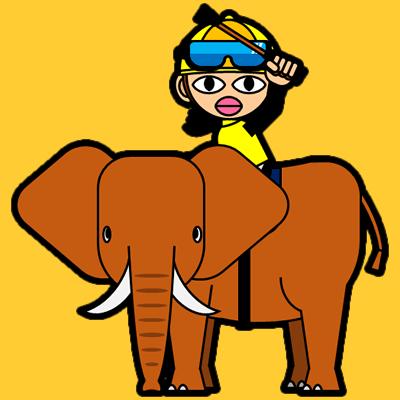 ゾウに乗る騎手のアイコン(13)画像7