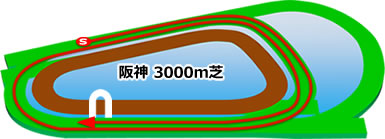 阪神3000m芝コース画像