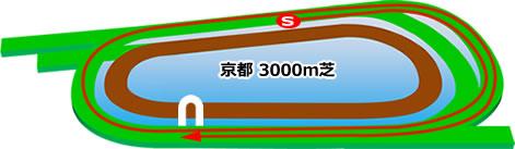 京都3000m芝コース画像