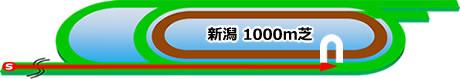 :新潟競馬場 芝直線1000m