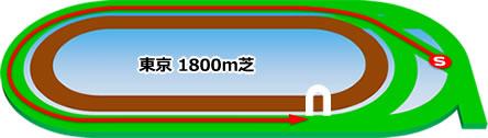 東京1800m芝コース画像